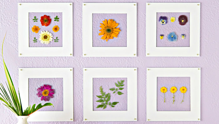 wall-art-with-pressed-flowers-101879066-1